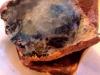 boccadimare-pietra-cristalli-mouthofsea-stone-cristals-cm-12x12-2012