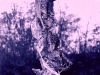metamorfosi-terracotta-pat-stoffametallo-cm-110x38x20-1976